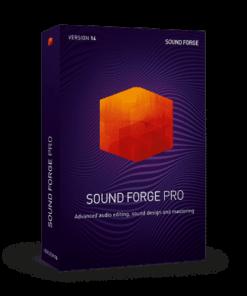 Sony Sound Forge Pro 14